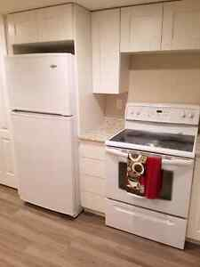 Furnished, new appliances, retro modern above ground apartment. Prince George British Columbia image 3