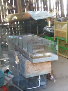 Cages - rabbit many sizes including breeding cages