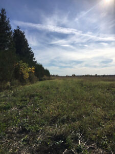 Serviced Lot  Egremont Rd in Camlachie