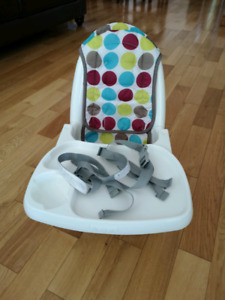 First year reclining high chair booster seat