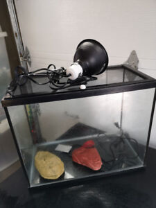New price - Aquarium and Supplies for Pet Lizard or Frog