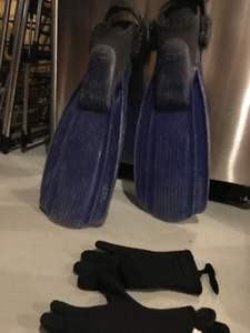 Used wetsuit, flippers and gloves $50