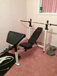 Incline/ decline bench with weights Windsor Region Ontario image 1