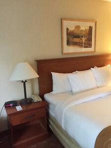 Furniture for Sale St. John's Newfoundland image 5