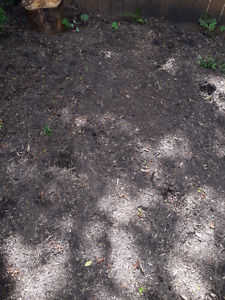Large Pile of Wood Chips mixed with Soil