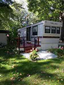 OPEN TO OFFERS >Golden Falcon Skirted in Ravine Cottages
