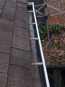 EXPERIENCED & INSURED GUTTER CLEANER,YARD CLEANUP & SNOW REMOVAL Kitchener / Waterloo Kitchener Area image 3