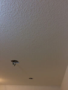 Selling Ceiling texturing ($1.0/SF), and installation Californi