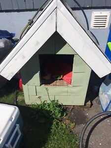 Dog house for sale $40 OBO Want gone