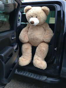 5 foot tall teddy bear