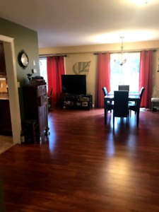 ***USED***Cherry Wood Finish Laminate Flooring. (350 sq. Ft)