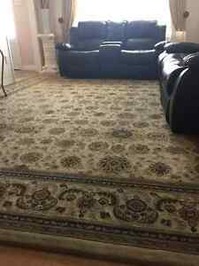 Area Rug Large Size 12.5 ft X 10 ft