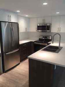 Newly Renovated 1 Bdrm Cook St Village