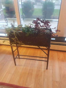 Mall wicket plant holder,  including plants