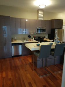 5 Bedroom, 2 Bath Luxury Student Apartment for LEASE