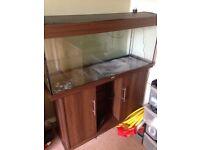Juwel 240 4ft fish tank aquarium