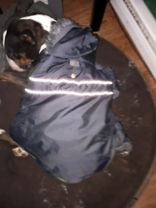 Manteau hiver pour chien grandeur XL