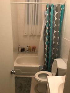 Bright 4 bedroom apt in the Lower Plateau available May 1st
