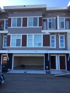 New House - Roomates needed - Midtown 2 Chilliwack