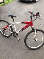 Nakamura Shockteam youth mountain bike