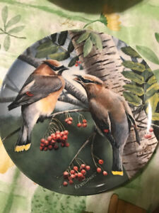 """Kevin Daniel Collectible Plate """"The Cedar Waxwing"""""""