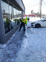 Professional Snow Removal Services Available