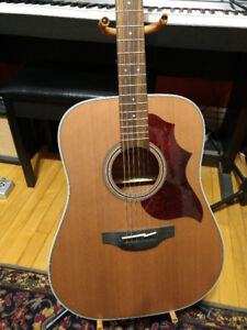 Takamine GD 20NS in Brand New Condition with Custom Pick Guard
