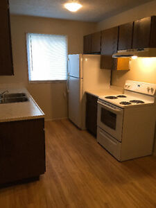 Renovated and new appliances 1500 sq ft townhouse - Feb 1st