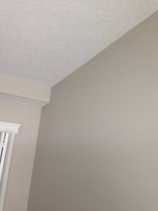 HOUSE PAINTING SERVICES INTERIOR High Quality Interior Painting Edmonton Edmonton Area image 6
