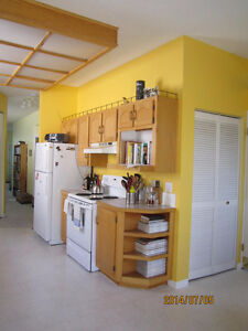 LOCATION LOCATION - SUNNYSIDE 2 BR. CHARACTER HOME - 5 M WALK DT