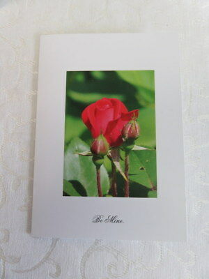 "Anniversery Greetings, Red Roses, ""Be Mine""  5x7 Photo Card With Envelope"