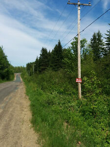 Land for sale in Beersville, NB  4 acres