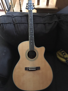 Segovia 6 String acoustic with Pickup