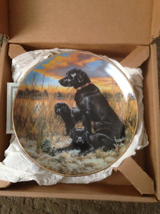 Classic Sporting Dog Collector Plate