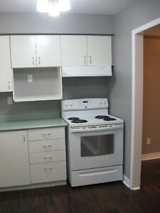 Available Now!!!  Townhouse for rent in lovely neighbourhood! Cambridge Kitchener Area image 3