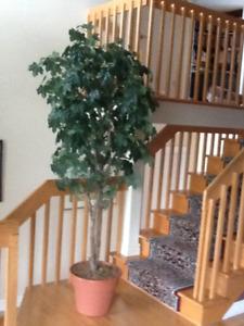 Plante arbre artificiel sur tronc naturel