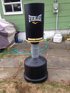 Everlast Free Standing Punching Bag