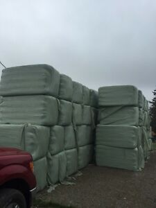 Wrapped Baleage For Sale