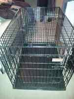 Dog Crate with Divider  31 H x 42 L x 28 W