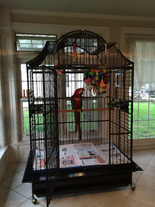 Macaw/large bird cage for sale