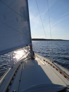 Sailboat Tanzer 7.5 Voilier- must sale