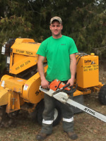 Stump Grinding Services - Stumptech