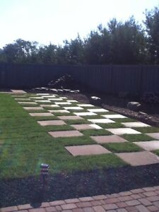 Lawncare and grass cutting London Ontario image 9