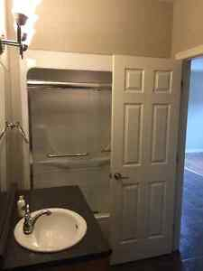 1 Bedroom Downtown Apartment