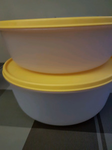 Tupperware bowls with lids.