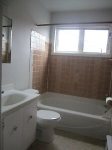 Moncton Hospital and Connaught Ave ( 1 and 2 bedrooms)