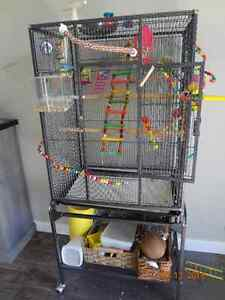 BUDGIE, CAGE,TOYS ETS