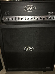 Peavey 6505+ head and cab