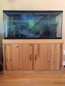 90 Gal Aquarium with Stand and Accessories