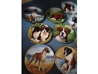 Boxer dog. 22 carat edge plates collection
